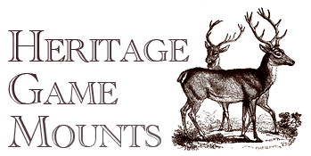 Heritage Game Mounts