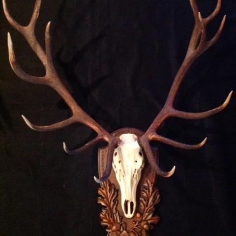 Monarch of the Glen, European Elk Panel by Heritage Game Mounts