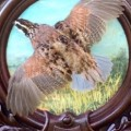 Quail on hand painted Heritage Game Mounts panel