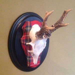 Royal Roe deer set on Royal Stewart tartan fabric.