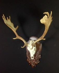 Fallow on Tradition Panel by Heritage Game Mounts